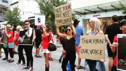 activism- demo